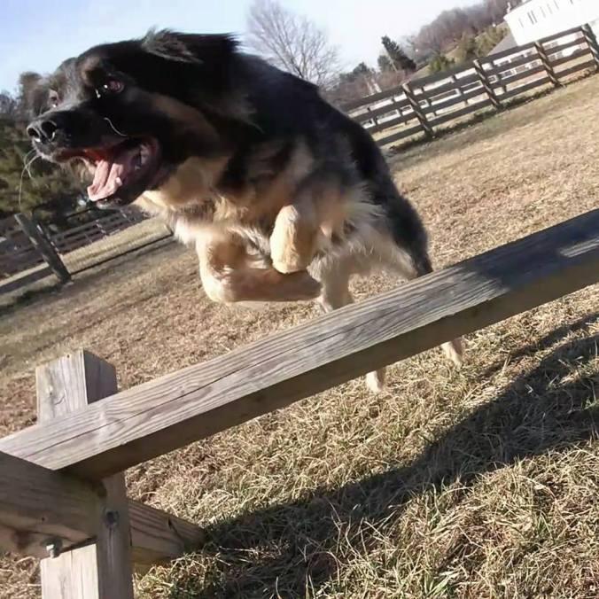 Boo Jump 2