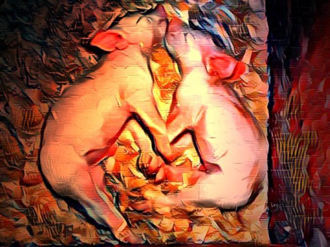 Heart Piglets